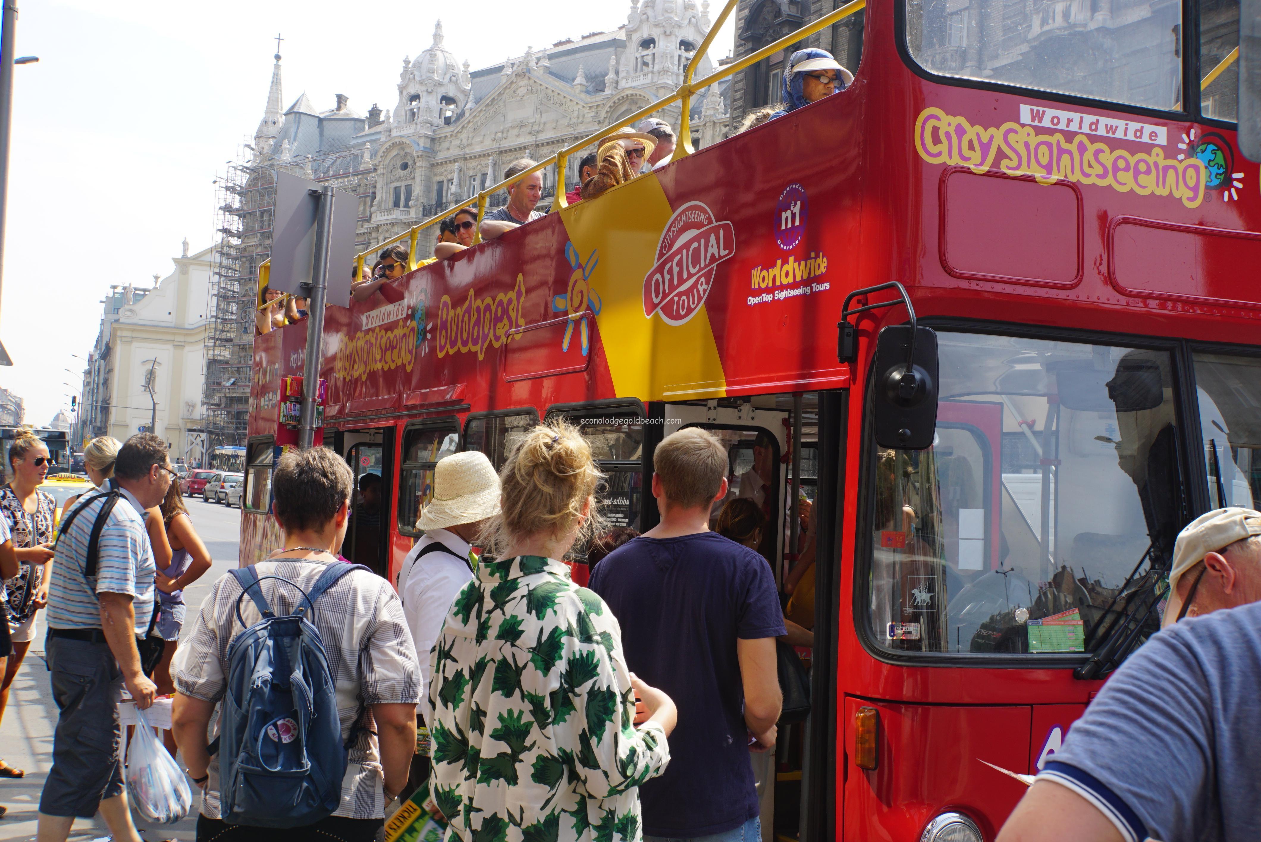 他のツアーバス
