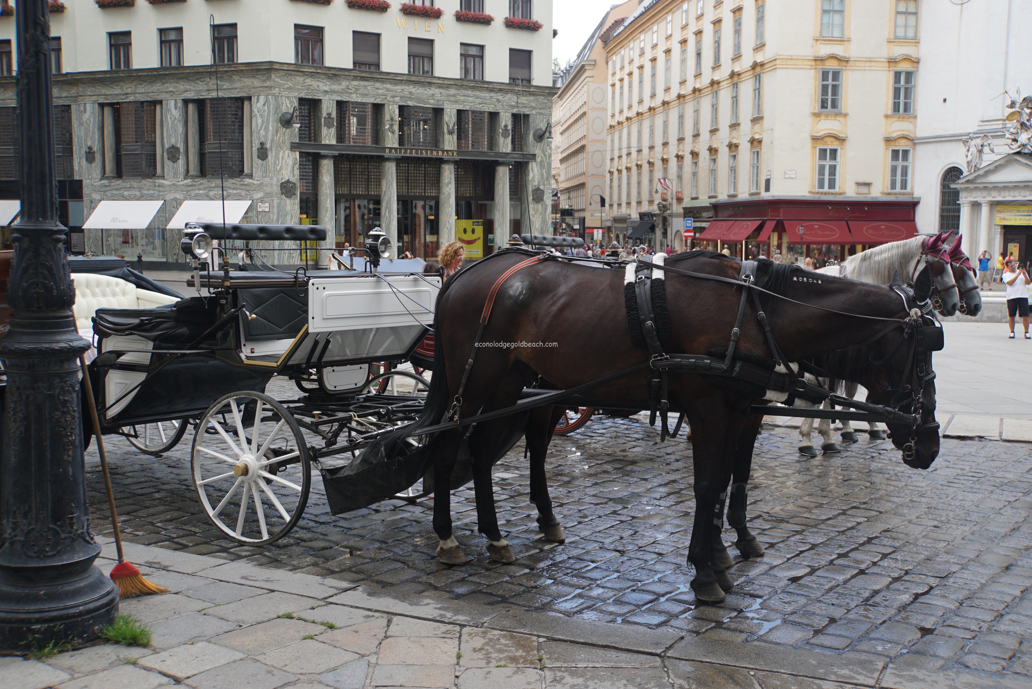 ウィーン王宮前