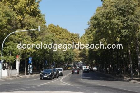 レスタウラドーレス広場2
